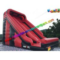 Wholesale Customized Two lane Inflatable Dry Slide With PVC for exhibition , celebration from china suppliers