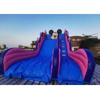 24 Foot Giant Mickey Mouse / Disney Land Inflatable Dry & Wet Bouncer Castle Slide