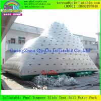 Buy cheap Crazy Water Game Customized Adult Inflatable Climbing Iceberg, Inflatable Water from wholesalers