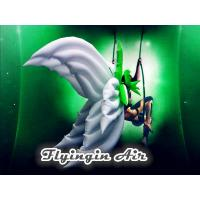 Wholesale High Quality White Stage Decorative Inflatable Wings for Event from china suppliers