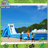 China QinDa Inflatable cartoon inflatable slide and bouncer, inflatable bouncy slide for sale on sale