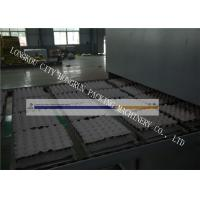 Wholesale High Output Egg Tray Machinery , Egg Crate Making Machine PLC Control from china suppliers