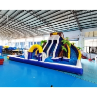 Wholesale Plato Double Side Inflatable Water Slide Jumper Bounce House from china suppliers
