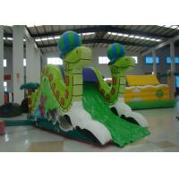 China Mini Snake Style Commercial Inflatable Water Slides 0.55mm Pvc Tarpaulin Safe Nontoxic on sale