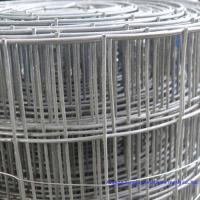 Wholesale Welded wire mesh/Stainless steel welded wire mesh 2×2,3×3,4×4, from china suppliers