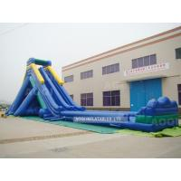 Wholesale Inflatable Huge Water Slide (AQ1031) from china suppliers