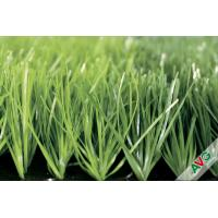 Heavy Metal Free Multicolor PE Soft and Natural Looking Grass 9000Dtex 20-50 pile height