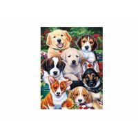 Wholesale Dogs Animal 3D Lenticular Poster For Hotel Decoration With 40x40cm Size from china suppliers