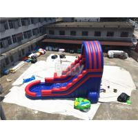 Summer Kids / Adult Inflatable Water Slides With Blower Blue And Red