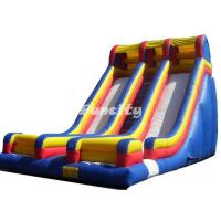 Wholesale Sea Turtle Theme Inflatable Slide For Pool With Long Stair And Double Slides from china suppliers