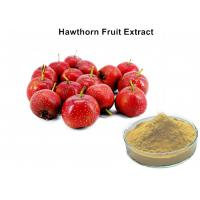 Wholesale 5% Flavonoids Hawthorn Extract For High Blood Pressure, Hawthorn Berry Extract Powder from china suppliers