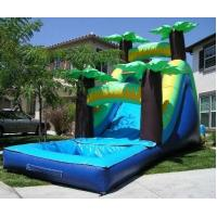 Wholesale Tropical Water Slide from china suppliers