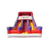 China Customized Size Commercial Inflatable Water Slides For Kids And Adults on sale