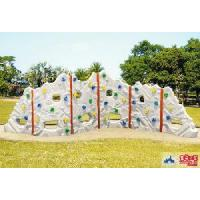 Wholesale Plastic Climbing Wall Tn-P171e from china suppliers