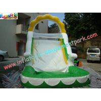 China Customized Outdoor Inflatable Water Slides With Pool For Backyard Use on sale