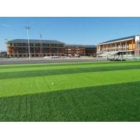 Wholesale Durable Soccer Artificial Turf , Monofil PE Real Looking Artificial Grass from china suppliers