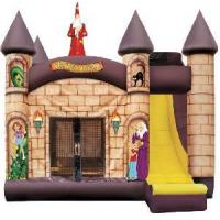 Wholesale Wizard′s Castle Bounce House With Slide 4-In1 (CZH-1038) from china suppliers