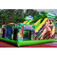 Wholesale Inflatable castle with slide  with warranty 24months from GREAT TOYS LTD from china suppliers
