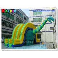 Wholesale Dinosaur Slide Inflatable gaint slide PVC Tarpaulin slide Inflatable slide Game KSL070 from china suppliers