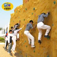 Wholesale Toddler Outdoor Play Equipment , Indoor Backyard Rock Climbing Wall For Kids from china suppliers
