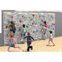 Wholesale Climbing for Children to Build Their Body (TY-11005) from china suppliers