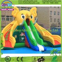 Quality Guangzhou QinDa Inflatable Slide for Pool Water Slides for Sale Inflatable Elephant Slide for sale