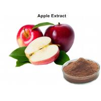 Wholesale Natural Fruit Extract Powder 80% Polyphneols Apple Extract Antioxidant Powder from china suppliers