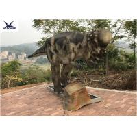 Buy cheap Pachycephalosaur Robotic Dinosaur Garden Statue Soft And Smooth Surface from wholesalers