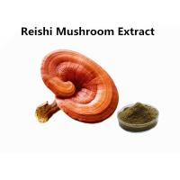 Wholesale Red Reishi Mushroom Polysaccharides Extract Powder Supports Immune Health Function from china suppliers