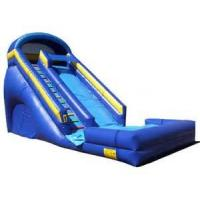 Amusement Park Giant Inflatable Adults / Kids Water Slides , UV / Aging Resistance