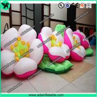 Wholesale Inflatable Flower,Flower Inflatable,Customized Inflatable Flower from china suppliers
