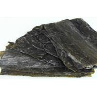 Wholesale Seafood Green Fresh Dried Kelp Seaweed Silk Rich In Algae Aroma / Vitamin from china suppliers