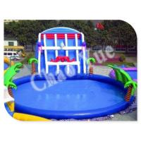 Wholesale Giant Inflatable Water Slide, Inflatable Slides with Pool from china suppliers