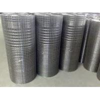 China Various Sizes Stainless Welded Wire Mesh , Galvanized Iron Wire Mesh Heavy Duty on sale