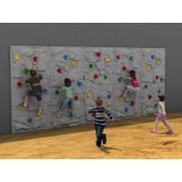 Wholesale 5 - 12 Years Old Kids Climbing Wall Outdoor With Plastic Slide from china suppliers