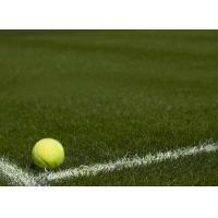 Wholesale Monofil PE Yarn Green Tennis Artificial Grass For Sports 3 / 16 Inch Gauge from china suppliers