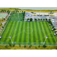 Wholesale Diamond Plus Outdoor Fake Turf Grass For Sports Field Anti UV Stem Shape from china suppliers