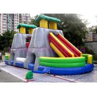 Wholesale Grey Castle Shuttle Inflatable Dry Slide With Red / Yellow Slipway Blew By CE Blower from china suppliers