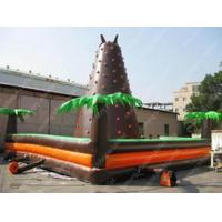 Commercial Inflatable Climbing Wall 5m x 5m x 6m For Playground