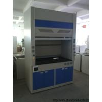 Quality Safety Lab Fume Hood Window Lift Freely With Hidden Fluorescent Lamp for sale