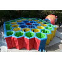 Customized Inflatable Haunted House Maze For Adult And Kids Entertainment