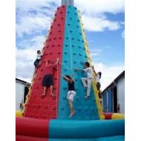 Wholesale Fire - retardant commercial PVC Inflatable Climbing Wall / Inflatable Climbing mountain from china suppliers