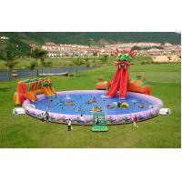 Wholesale Fantasy Dragon Slide Pool Water Park For Kids from china suppliers