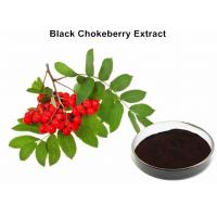 Wholesale Black Chokeberry Extract Powder, Aronia Berry Extract Lowering Blood Sugar from china suppliers