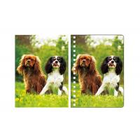 Buy cheap Cartoon Pet Spiral Animal 3D Lenticular Notebook For School Student Stationery from wholesalers