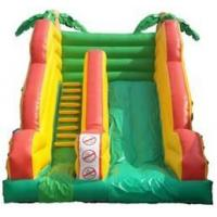 Buy cheap Waterslides from wholesalers