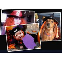Wholesale NO.4412 Custom jessie character mascot costumes from china suppliers