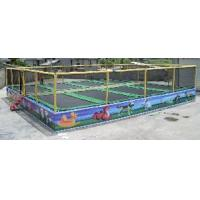 Eight in One Combine Trampoline (ZY-5013)