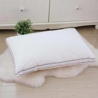 Wholesale Lightweight Hotel Collection Pillows 80% Velvet Down And Color Piping Edge With 48 * 74cm from china suppliers