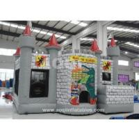 Wholesale Inflatable Castle (AQ07134) from china suppliers